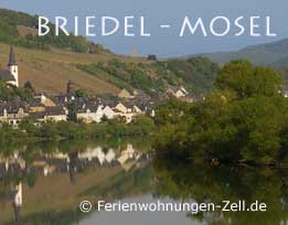 Pension Mosel -Weingut Gibbert Briedel an der Mosel